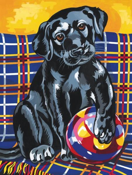 Reeves Junior Malen nach Zahlen Verspielter Labrador