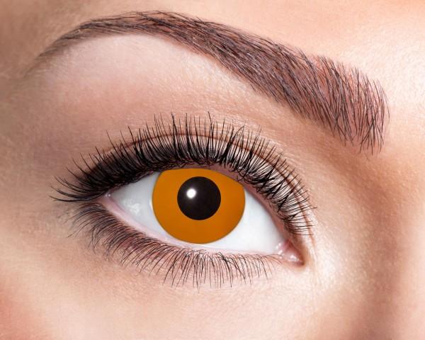 Eyecatcher UV Flash 1 Monatslinsen Flash orange