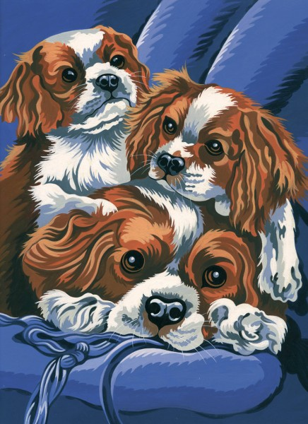 Reeves Junior Malen nach Zahlen King Charles Spaniel