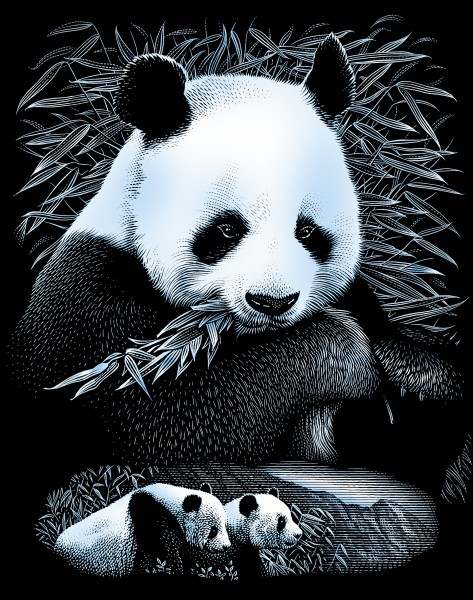 Reeves Gravurfolien Silber Pandaportrait