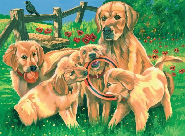 Reeves Malen nach Zahlen Spielende Labradore