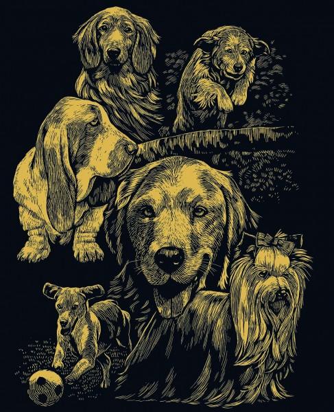 Reeves Gravurfolien Gold Hunde-Montage