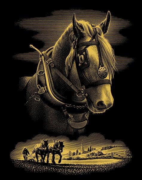 Reeves Gravurfolien Gold Pferdeportrait