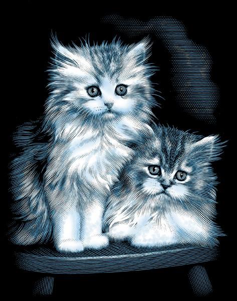 Reeves Gravurfolien Silber Flauschige Kätzchen
