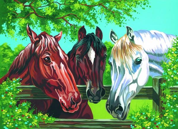 Reeves Malen nach Zahlen Pferde am Gatter