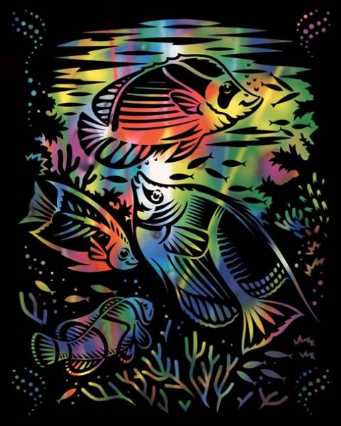 Reeves Gravurfolien Regenbogen Fische