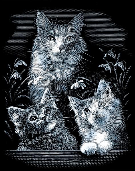 Reeves Gravurfolien Silber Kleine Kätzchen