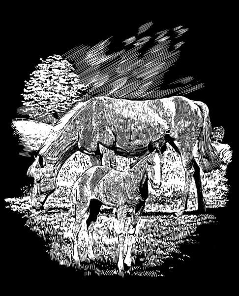 Reeves Gravurfolien Silber Pferd mit Fohlen