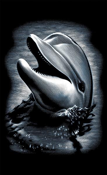 Reeves Mini Gravurfolien Silber Delfin