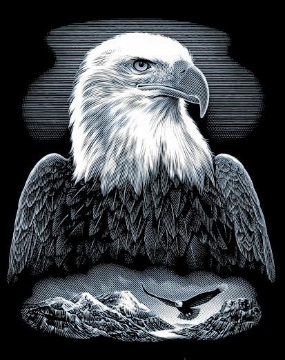 Reeves Kratzbild Silber Adler