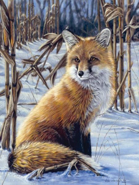 Reeves Artist Collection Malen nach Zahlen Fuchs