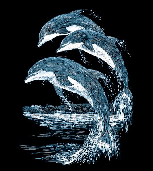 Reeves Gravurfolien Silber Delfine