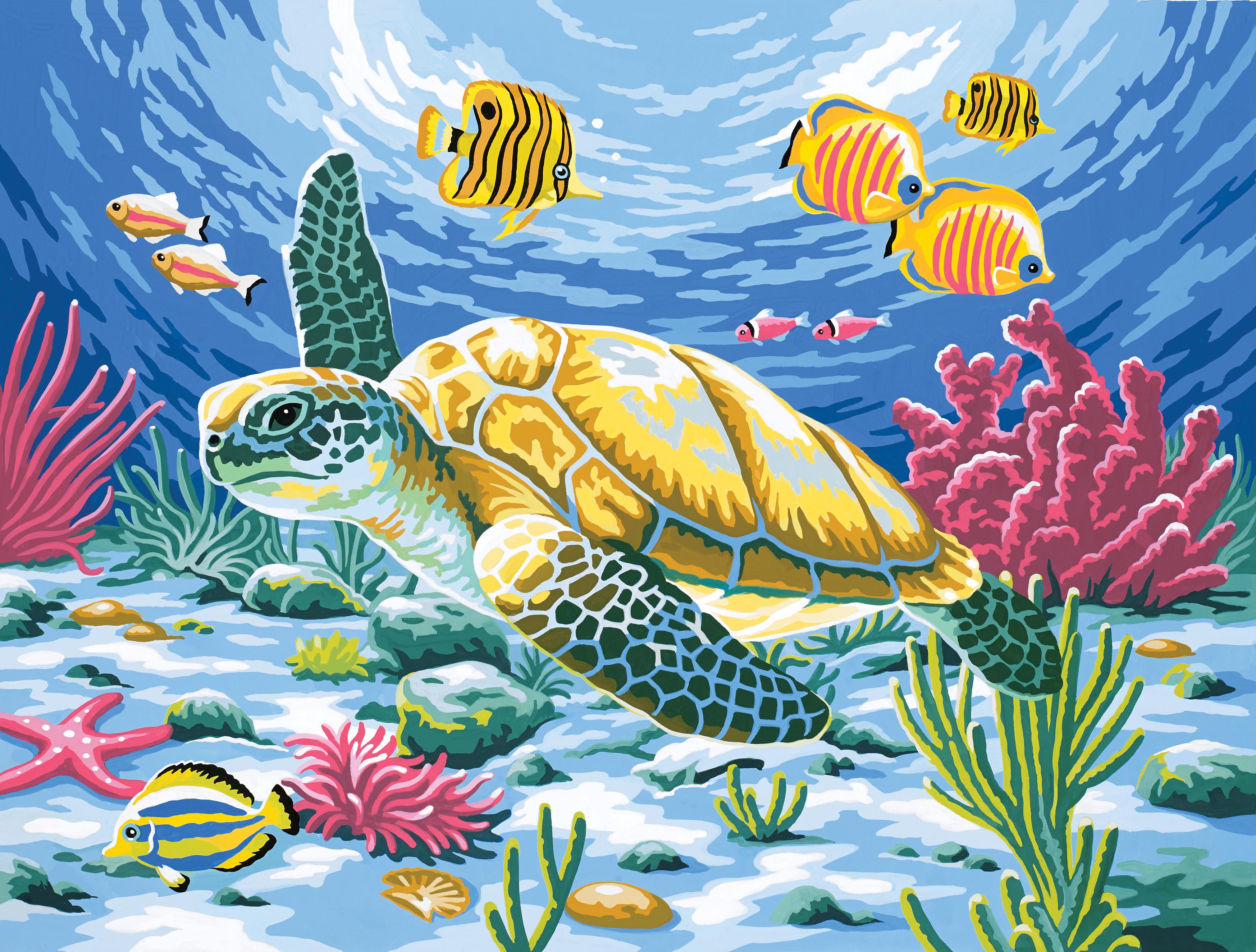 Reeves Malen nach Zahlen Meeresschildkröte | Eventshop A-Z