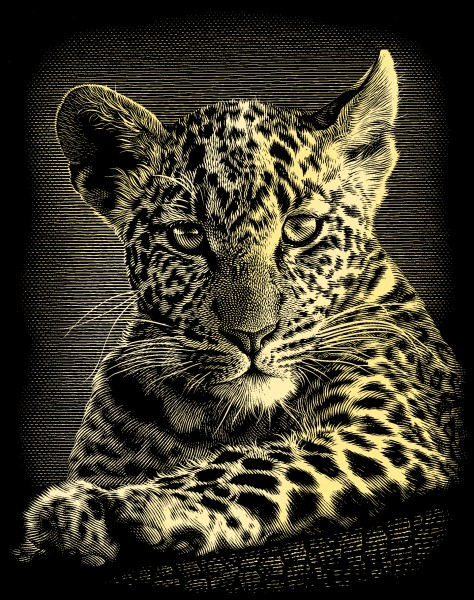 Reeves Gravurfolien Gold Leoparden Portrait